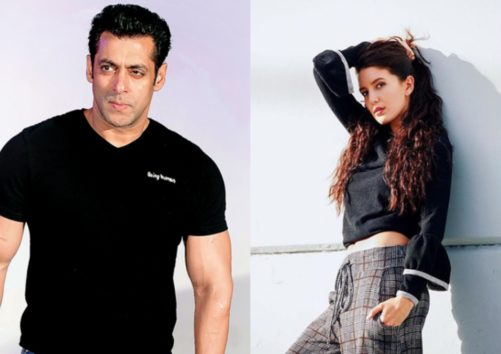 Here Is The Latest Update On Salman Khan's Role In Isabelle Kaif Debut Movie