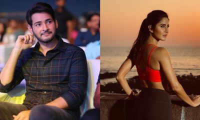 Katrina Kaif Speaks On The Rumors Of Doing A Film With Tollywood Superstar Mahesh Babu
