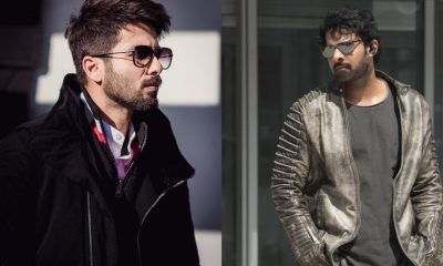 Even The Baahubali Is Mighty Impressed With Shahid Kapoor After Watching Kabir Singh Teaser
